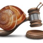 Al giudizio di ottemperanza proposto dall'avvocato distrattario nell'ambito di un processo ex legge Pinto si applica l'esenzione dal pagamento del contributo unificato